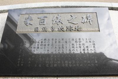 11A_4931.JPG